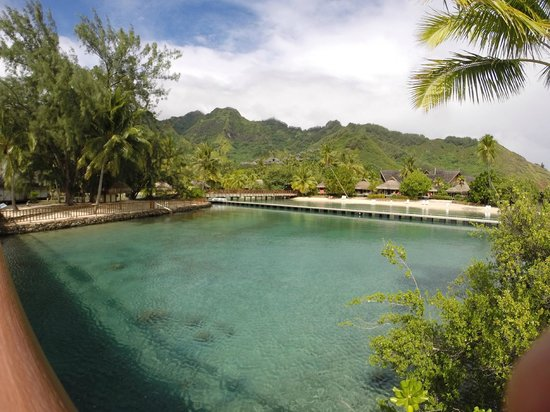 InterContinental Moorea Resort & Spa : Praia entre bungalows