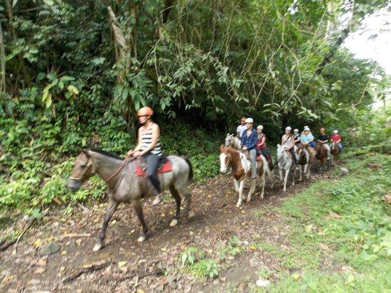 Los Lagos Hotel Spa & Resort: Horseback Riding at the Resort