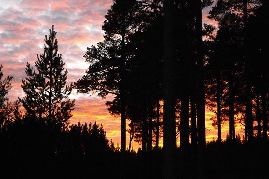 Loch an Eilein: Sunset