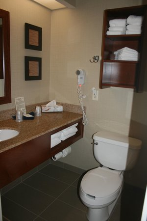 Comfort Inn & Suites North Conway: Toilet and sink area