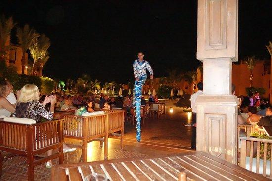 Stella Di Mare Beach Resort & Spa Makadi Bay: Animation