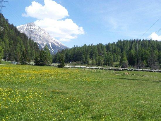 Trenino Rosso del Bernina: Cavaglia