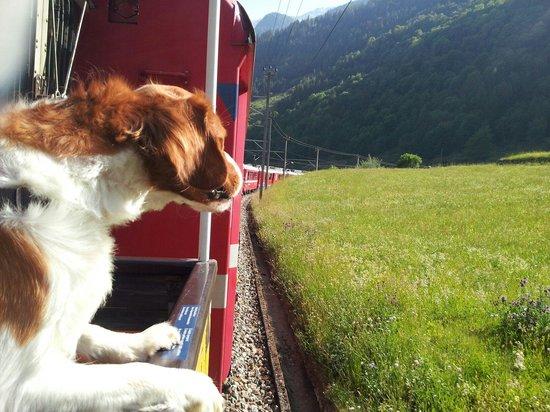 Trenino Rosso del Bernina: Carrozze aperte