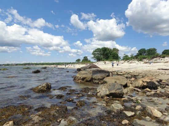 Harkness Memorial State Park: Beach.