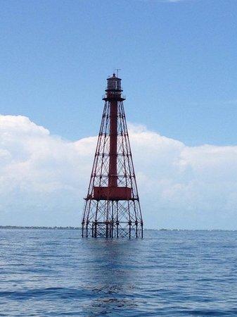 Starfish Snorkeling: Sombrero Key Lighthouse