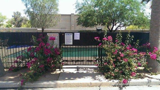 Super 8 Casa Grande : The pool gate