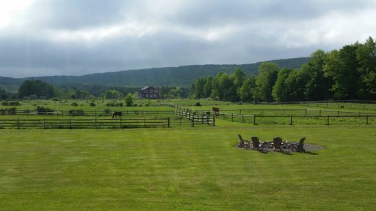 Mountain Horse Farm B&B and Wellness Retreat: View from the Lodge!