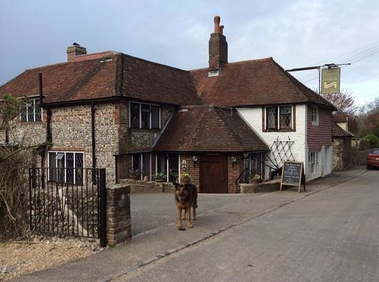 The Plough and Harrow: The pub