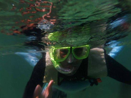 Reef Roamer Snorkel: the bf