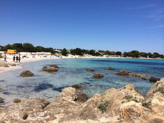 The Pelican Beach Resort & Spa - Adults Only : Plage de l'hôtel
