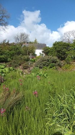 Dyffryn Fernant Gardens: The cottage at Dyffryn Fernant, looking up from part of the gardens