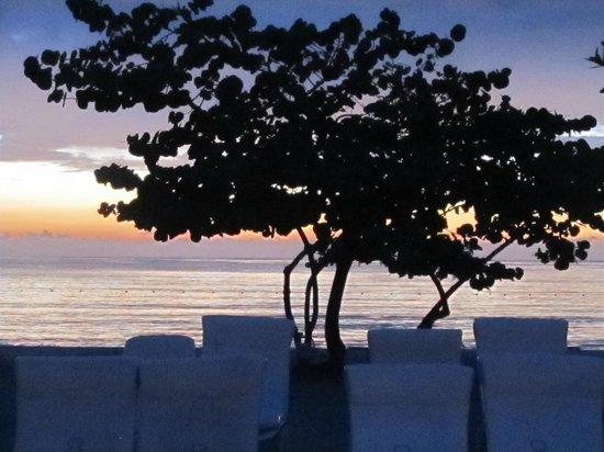 Couples Negril : Sunset and a Seagrape Tree
