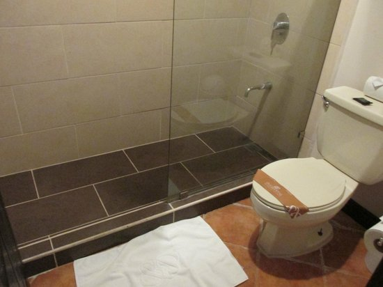 Occidental Grand Papagayo by Barcelo: Bathroom- shower, old toilet