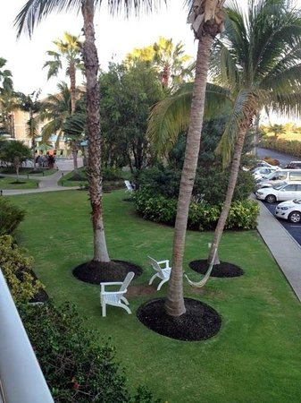 Sunshine Suites Resort: view of grounds from room 206