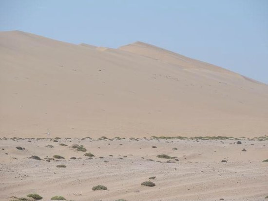 Alter Action Sandboarding: The sand dunes are very big!