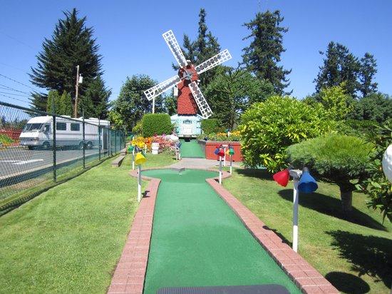 Paradise Fun Park: Fun