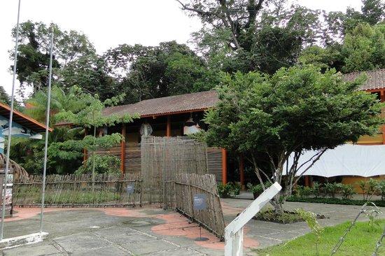 Museu da Amazonia (MUSA): MUSA