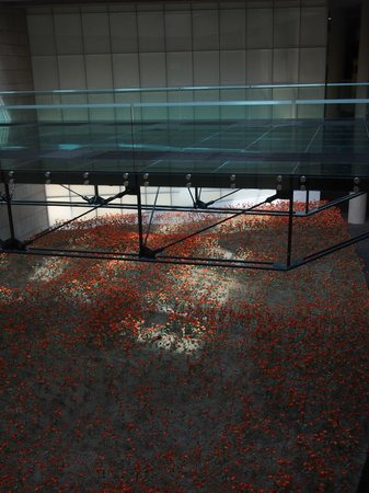 National World War I Museum and Memorial : The glass bridge over poppy field