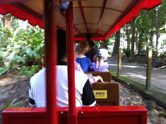 Currumbin Wildlife Sanctuary: The tram..
