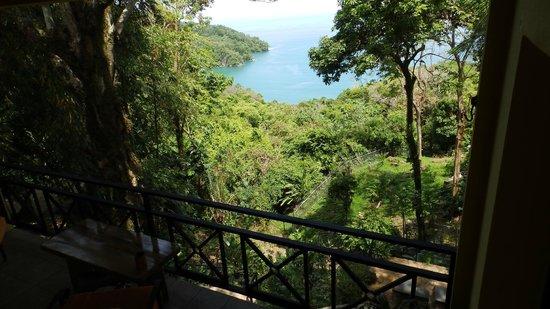 Mango Moon Villa : Mango Moon Gecko Suite Patio View - Guest Photo