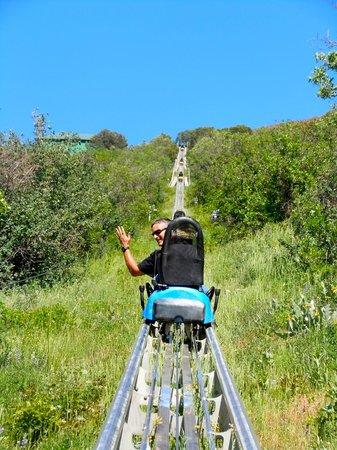 Glenwood Caverns Adventure Park : Ride back up after ride on Alpine Coaster, A BLAST!