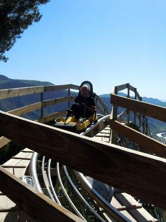 Glenwood Caverns Adventure Park : Alpine Coaster, worth the cost of admission!!! F-U-N!!!!