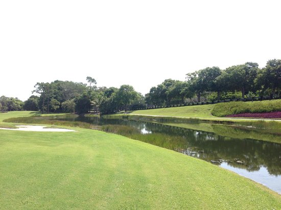 PGA National Resort & Spa: One of the 15 holes with water