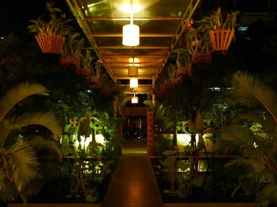 TeaHouse: Entrance walkway by night