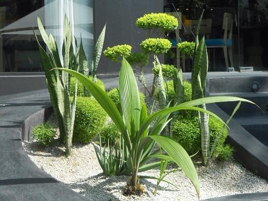 Riande Granada Urban Hotel: jardin