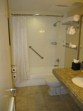 The Read House Historic Inn And Suites: Clean bathroom but definately needs towel rack or hooks