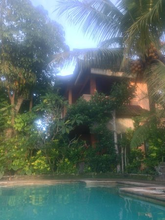 Sri Sunari Guest House: guest house from pool