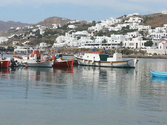 Ilio Maris Hotel : puerto de Mylonos