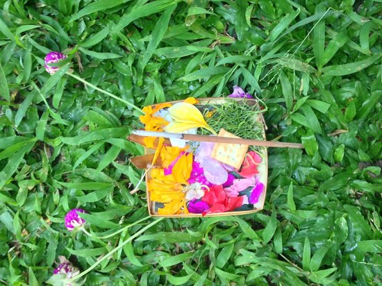 Sri Sunari Guest House: offerings placed around grounds daily