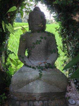 Sri Sunari Guest House: Buddha in garden