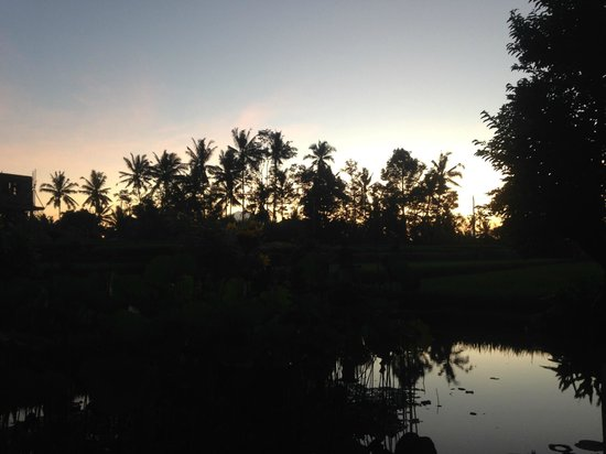 Sri Sunari Guest House : view before dawn