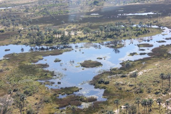 andBeyond Xaranna Okavango Delta Camp: View from the air arriving at the Delta