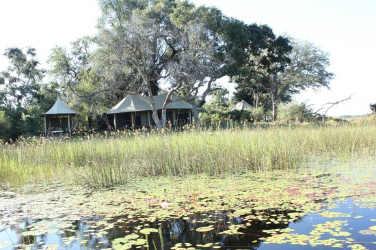 andBeyond Xaranna Okavango Delta Camp: Arriving at the Lodge from the water