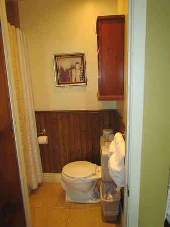 Hotel l'Ermitage : Bathroom