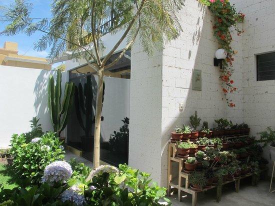 La Gruta Hotel : zona de jardines