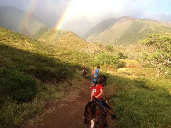 Lahaina Stables: The trail ride