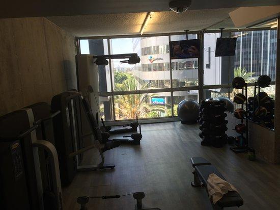 The Line : Gym