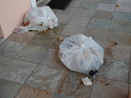 Taino Beach Resort & Clubs: More Trash Pictures