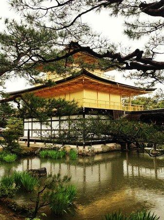 Templo del Pabellón de Oro (Kinkaku-ji): The Golden Pavilion