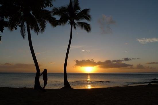 East Winds: sunset