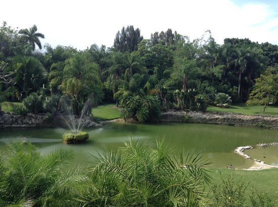 Pinecrest Gardens: Peace and Serenity