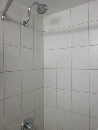 Best Western North Bay Hotel & Conference Centre: Our shower