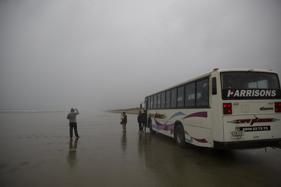 Harrisons Cape Runner: The Bus on the Beach