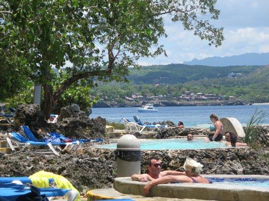 Casa Marina Reef: reef