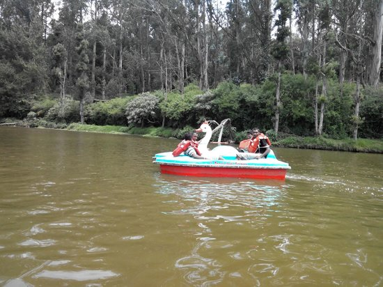 Ooty Lake: Boating