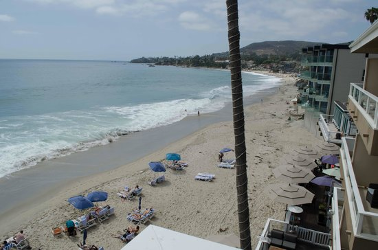 Pacific Edge Hotel on Laguna Beach : View from room 703